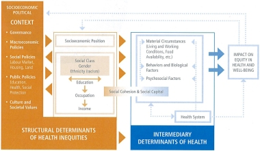 social-determinants-of-health-flow-chart